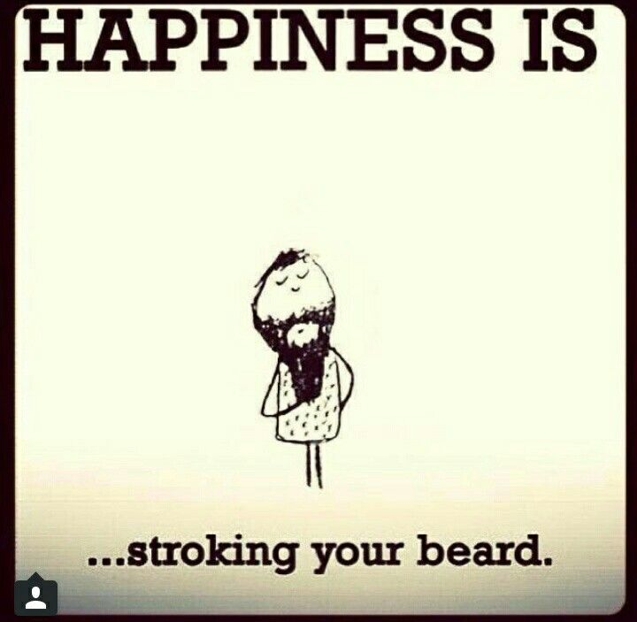 4d24efd2f09dc7cc10bc3fe7f87a2f9b_beards-every-day-and-beard-i-love-beard-memes_720-703